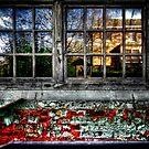 Through the Window by Den McKervey