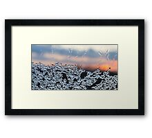 Ice melts at a window in the evening sun Framed Print