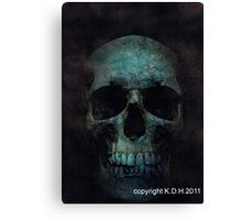 skulls 002 Canvas Print