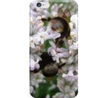 Bees Bottoms iPhone Case iPhone Case/Skin