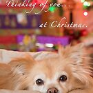 Thinking of you at Christmas by Kathleen  Bowman