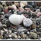 Pebbles by Kevin Meldrum