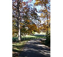 Country Road - Nature Photography Photographic Print