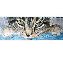 Cat Eyes - Acrylic on Stone Photographic Print