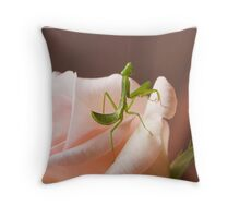 Baby Praying Mantis on a Pink Rose Throw Pillow