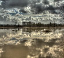 Big Muddy River by Dale Lockwood