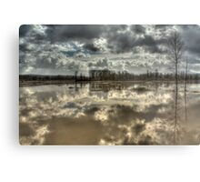 Big Muddy River Metal Print