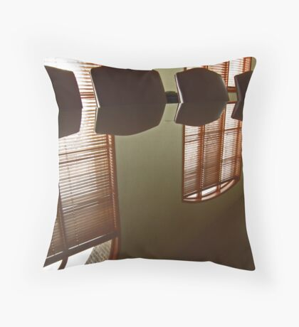 Office Reflection Throw Pillow