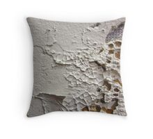 Wall Abstract Throw Pillow