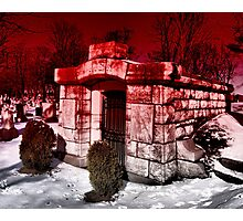 Under A Blood Red Sky Photographic Print