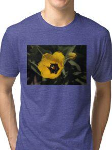 Yellow Tulip Tri-blend T-Shirt