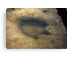 Footsteps Into Another Era Canvas Print
