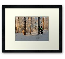 Cats Play Hide And Seek  Framed Print