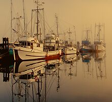 Misty Moorings by Wendi Donaldson