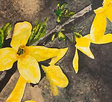 Yellow Flowers by Amara Paul