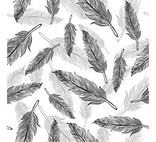 feathers pattern  Photographic Print