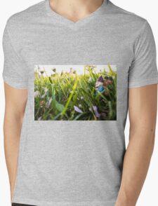 Big Meadow Roy Mens V-Neck T-Shirt