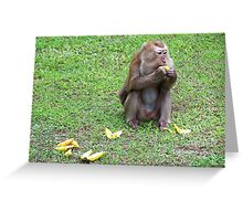 Hungry Monkey Greeting Card