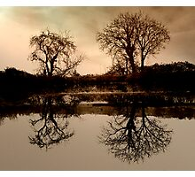 Canal Reflection .. Photographic Print