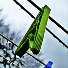 Green Peg by jlv-