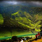 Munnar - Landscape by Mr T