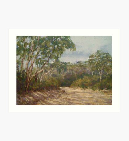 Mt Blackheath track Art Print