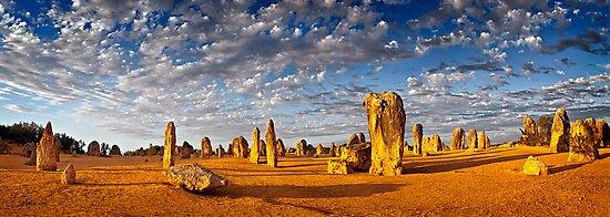 The Pinnacles (Panorama) by Mieke Boynton