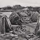 fishing nets - B&W by Shamila Chady