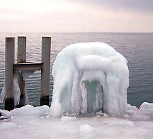 Frozen  by Sunil Bhardwaj