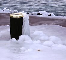 Frozen Bin  by Sunil Bhardwaj