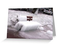 Frozen Bench  Greeting Card
