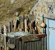 Blue Door and Grey Mullet by jonshort58