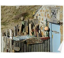 Blue Door and Grey Mullet Poster