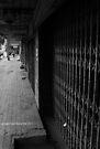 desolation (black and white) by Karl David Hill