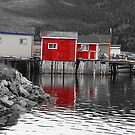 Fishing Stages in Fleur de Lys Newfoundland by Vickie Emms