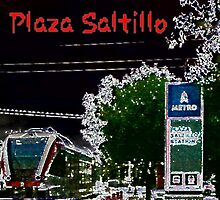 Plaza Saltillo by Cheltre