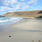 Gwynver Beach at Low Tide by jonshort58