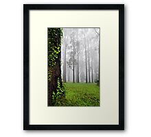 If you go down to the woods today... Framed Print