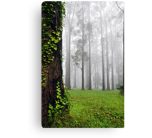 If you go down to the woods today... Canvas Print