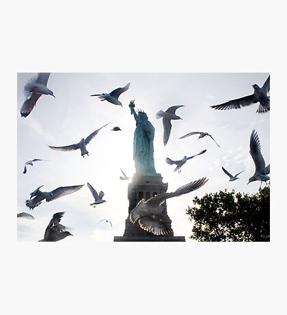 Statue of Liberty with Birds: NYC Photographic Print