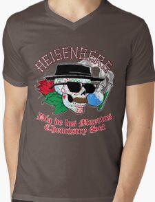 Chemistry is Fun! Mens V-Neck T-Shirt
