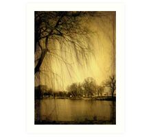 Weeping Willow © Art Print