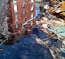 Losing my memory by Christophe Claudel
