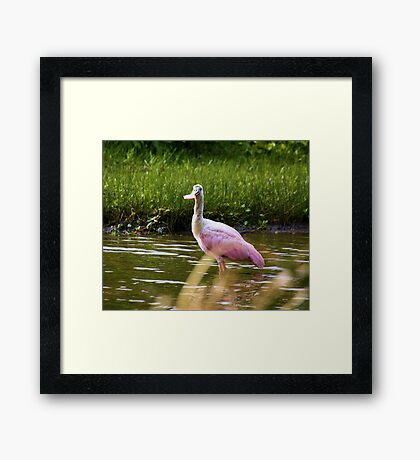 Just a Little Early Framed Print