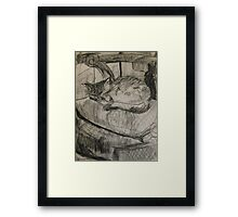 cat sleeping Framed Print
