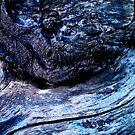 Blue bark by Christophe Claudel