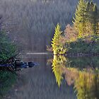 Loch Ard,Trossachs,Scotland by Jim Wilson