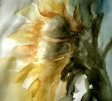watercolour sunflower by marie stewart