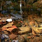 Tallulah river in the fall  by KSKphotography