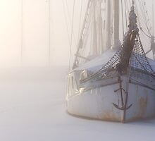 Wrapped in plastic by Ulf Bjolin